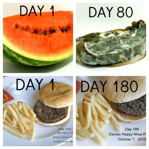 Organic Food Recipe Good For People